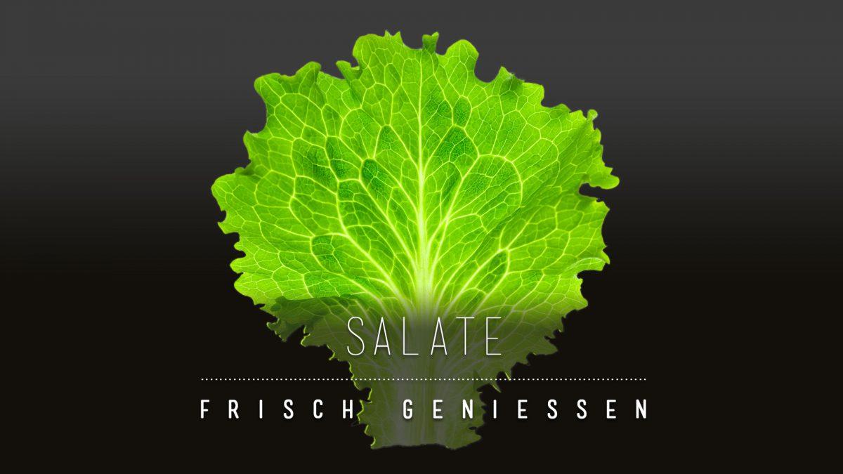 9010-CARD - Wie man Salat über Tage länger haltbar machen kann