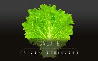 90.10.-CARD – Wie man Salat über Tage länger haltbar machen kann